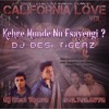 Kehre Munde Nu Fsayengi? Dj Desi Tigerz - California Love Vol 3 mp3