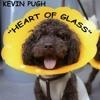 Kevin Pugh -