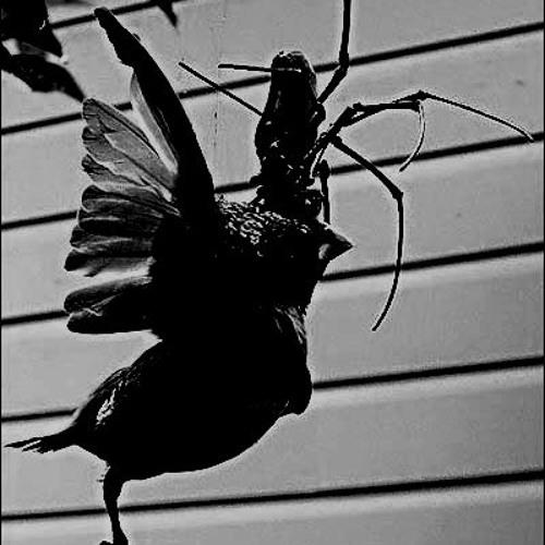 эмина лилит - поедая птиц