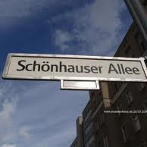 SchönHouser Allee