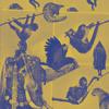Mugwump - God Is Gracious: Release Date 24th June