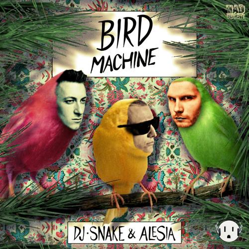 Bird Machine - DJ Snake (Digga Please Transition Bootleg) **Free Download**