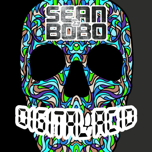Digital Acid by Sean&Bobo