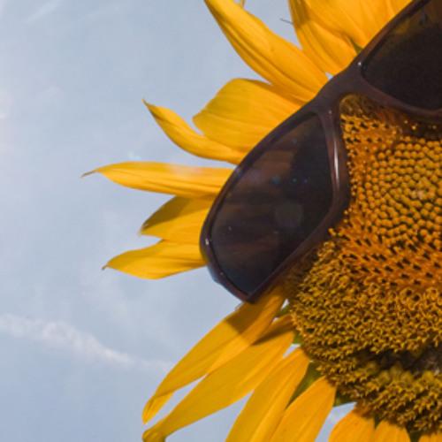 Kronenburg  ᴸᴵᵛᴱ - Sunglasses