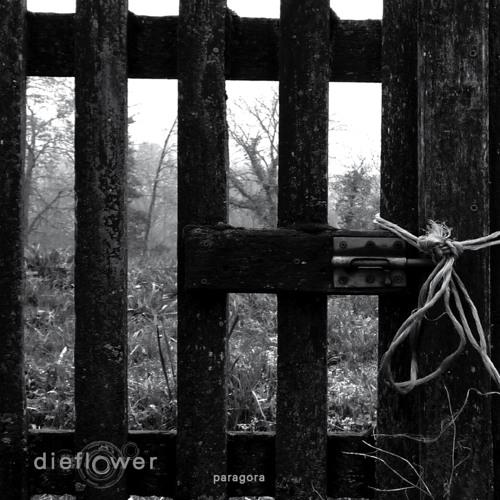 dieflower - paragora - even the score