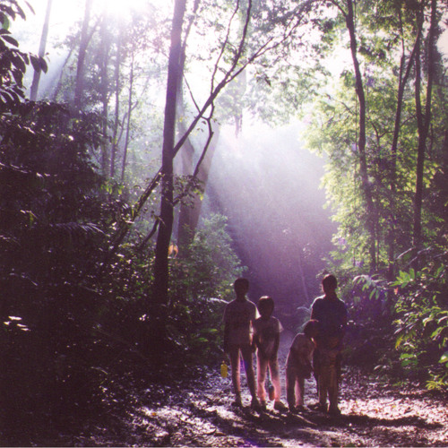 Tanager Peak (Ft. Gemma Hayes)