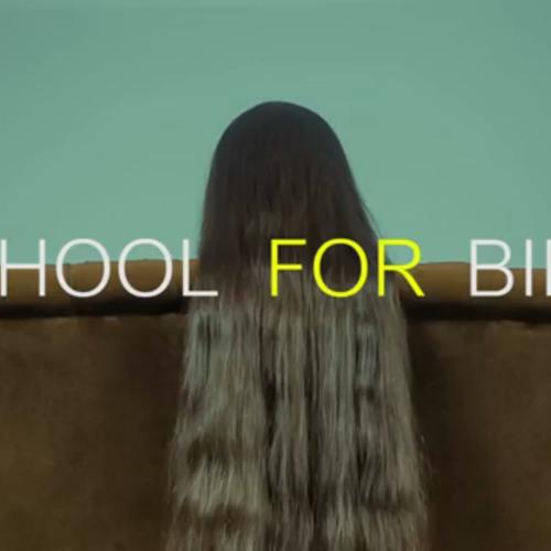 School For Birds - I Need