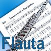 Flauta Sampleada - Hinos de Louvores