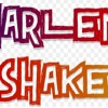 POST HARLEM SHAKE VOL3 - MIX