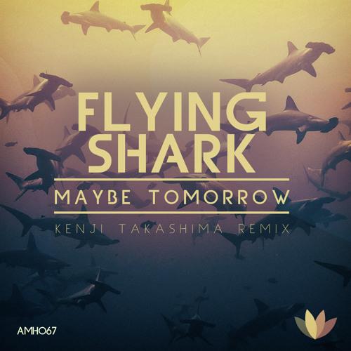 MaybeTomorrow- Flying Shark Kenji Takashima remix (A must have)