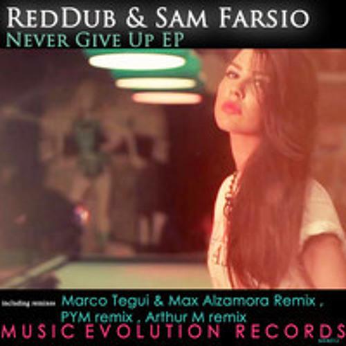 Reddub & Sam Farsio - Never Give Up (Arthur M Remix){snippet}