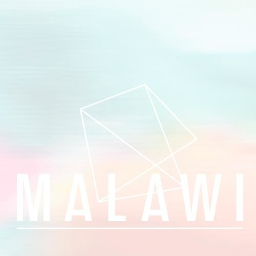 Malawi Moonflight Mix