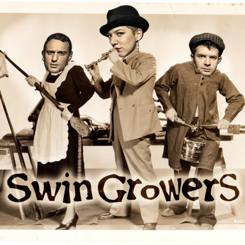 SWINGROWERS - Craziness - @ 2011 original mix- (Demo Version)
