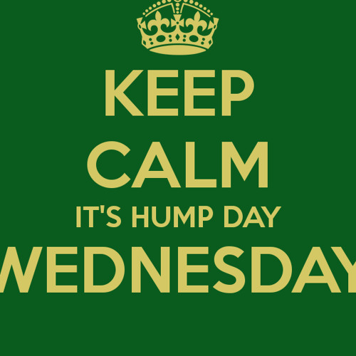 HUMP A DAY