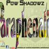 Paraphenalia from