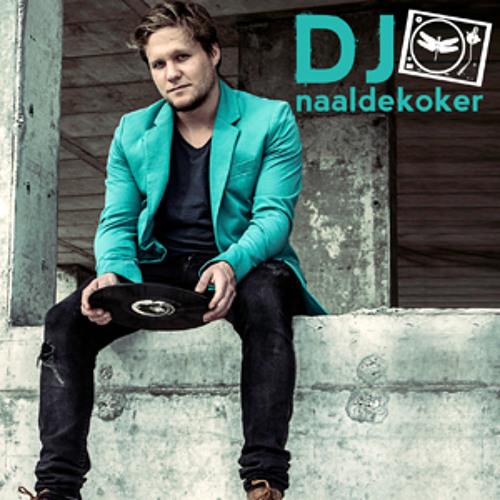DJ Naaldekoker feat Richard Brokensha - Lost In Here