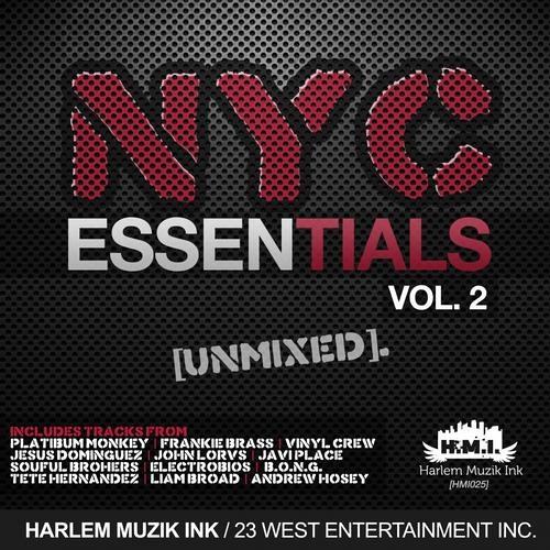 Alessandro Otiz - All I Wanted  (Steve Self Remix) Harlem Muzic Ink.