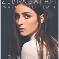 Banks - Warm Water (Zebra Safari Remix)