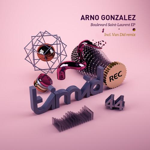 Arno Gonzalez - Saint Laurent (Van Did Remix) [Timid]