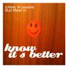 Bud Maier & Kanal W - know it´s better