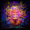 Shpongle - Brain in a Fishtank