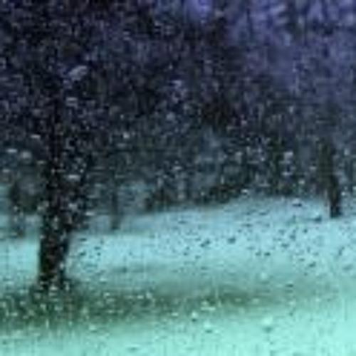 RMS2-3 Rain Fall