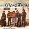 Gipsy Kings - A mi manera (guitar cover~solo~)