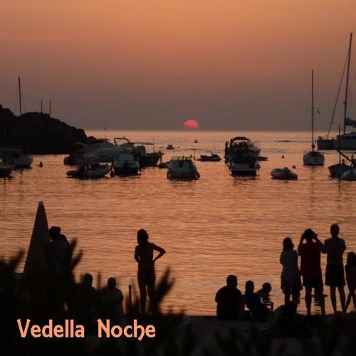 Vedella Noche