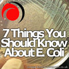7 Things You Should Know About E. Coli