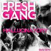 Download FreshGang - Hallucinatory (Radio Mix)  sc Mp3