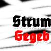 StG ft Setia Band jangan mau mau mixdown