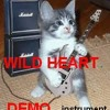 WILDHEART (Rock demo) INSTRUMENT (DOWNLOAD !!!)