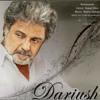 Dariush Eghbali - Na (Pezhman.M)
