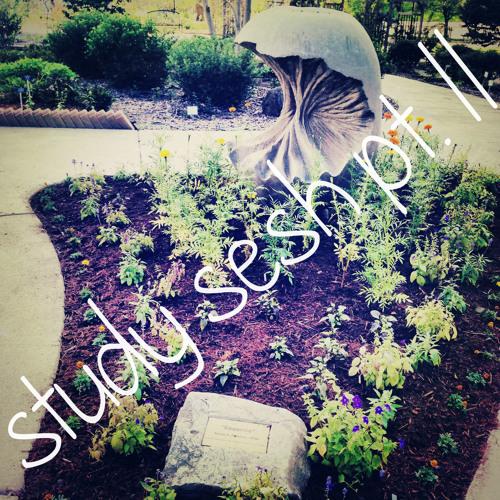 study sesh--pt. II