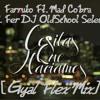 Farruko Ft. Mad Cobra - Cositas Que Haciamos [Gyal Flex Mix] Prod. Fer DJ OldSchool Selectah