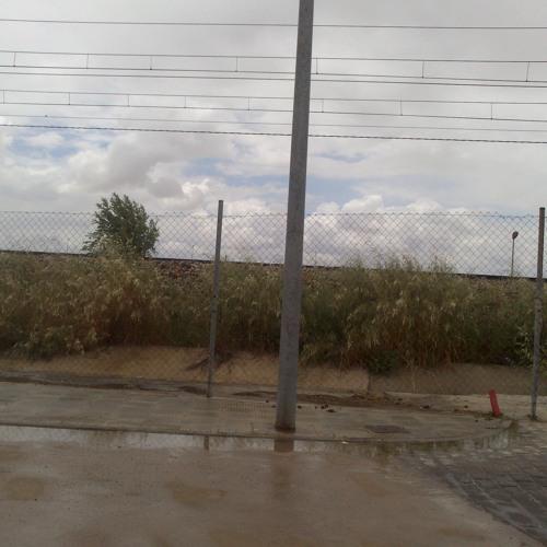 Día De Lluvia  en Campo de Criptana