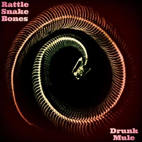 DRUNK MULE - Rattle Snake Bones