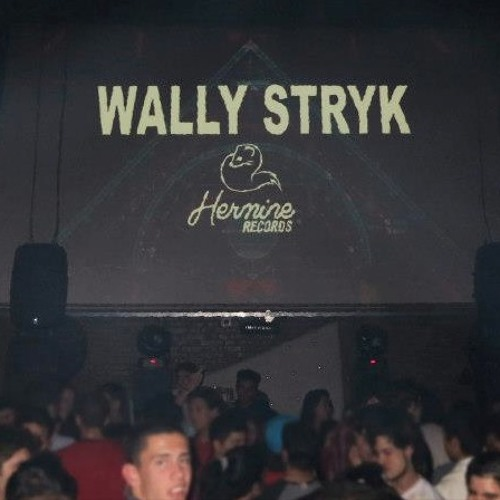 Wally Stryk - DJ SET at MINIMOOG CLUB - 08/06/2013 - Deep House [Free download] Part 1