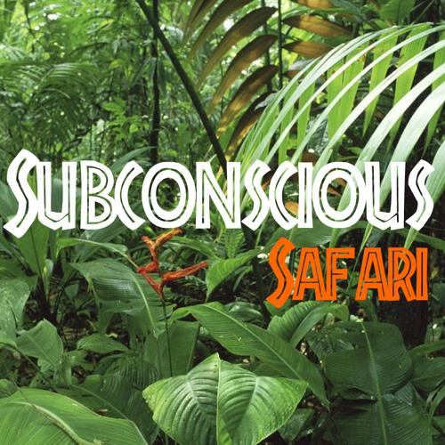Gruckey - Subconscious Safari