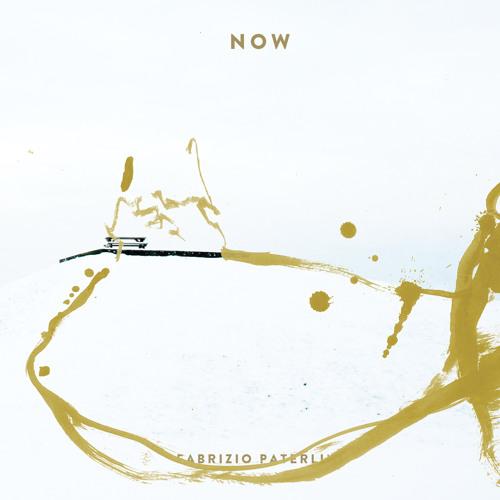 Fabrizio Paterlini - My perfect time (live)