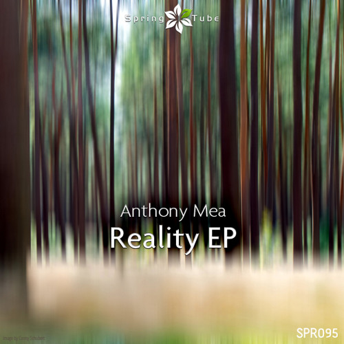 Anthony Mea - Reality EP (Teaser) [SPRING TUBE]