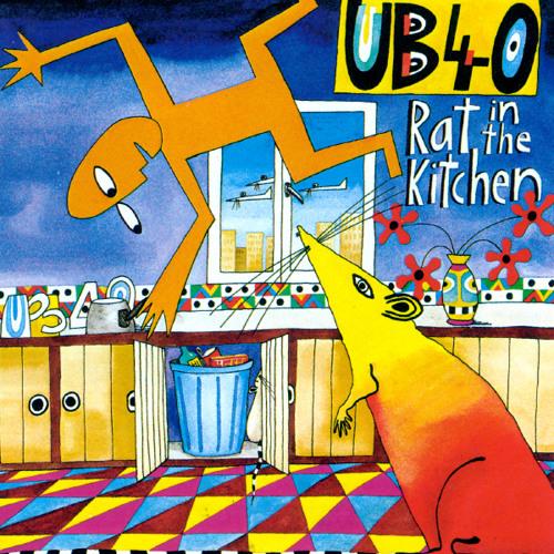 Rat In Mi Kitchen