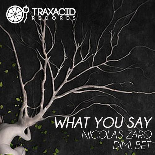 Nicolas Zaro,Dimi Bet-What You Say (Original Mix)