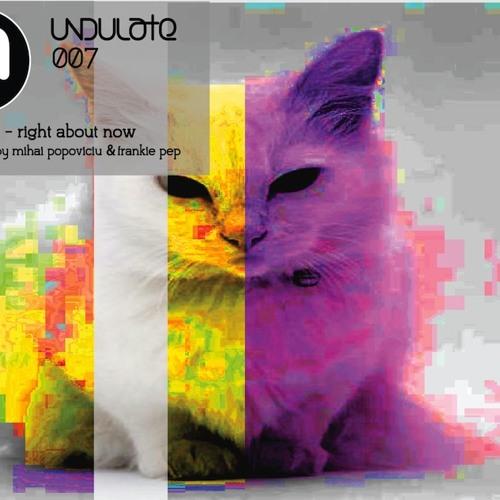 Undulate Recordings 007 Feline 9 - Right About Now (Audioshapes Remix)