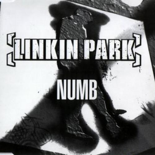 Linkin Park Numb Remix - DeejaySkorne ft. TechnoShizzy