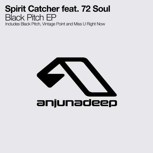 Spirit Catcher - Vintage Point