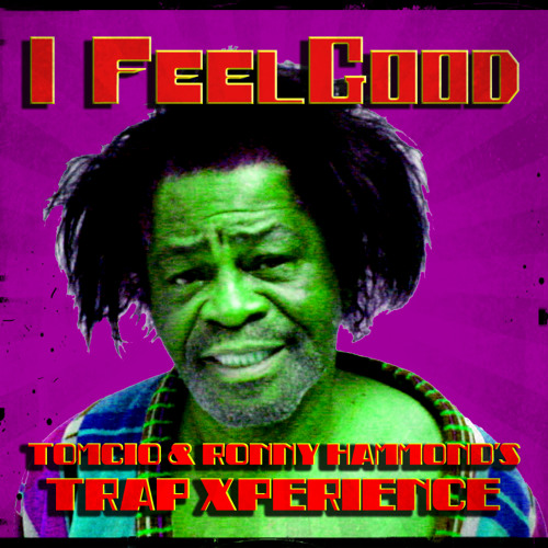 James Brown - I Feel Good (Tomcio & Ronny Hammond's Trap Xperience) !!! FREE DOWNLOAD !!!
