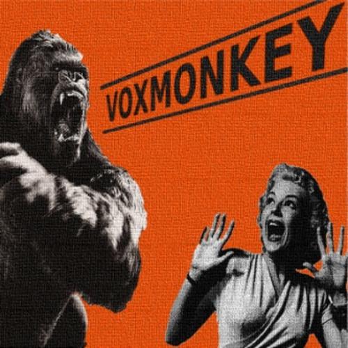 voxmonkey - #stbb327