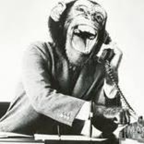 Mongk - Telephone Monkey