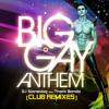 DJ Stonedog ft. Thara Banda - Big Gay Anthem (Argonauts Back To The Disco Remix) PREVIEW
